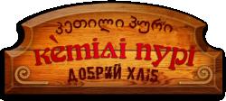 /images/logos/n3aozhyi_logo.png